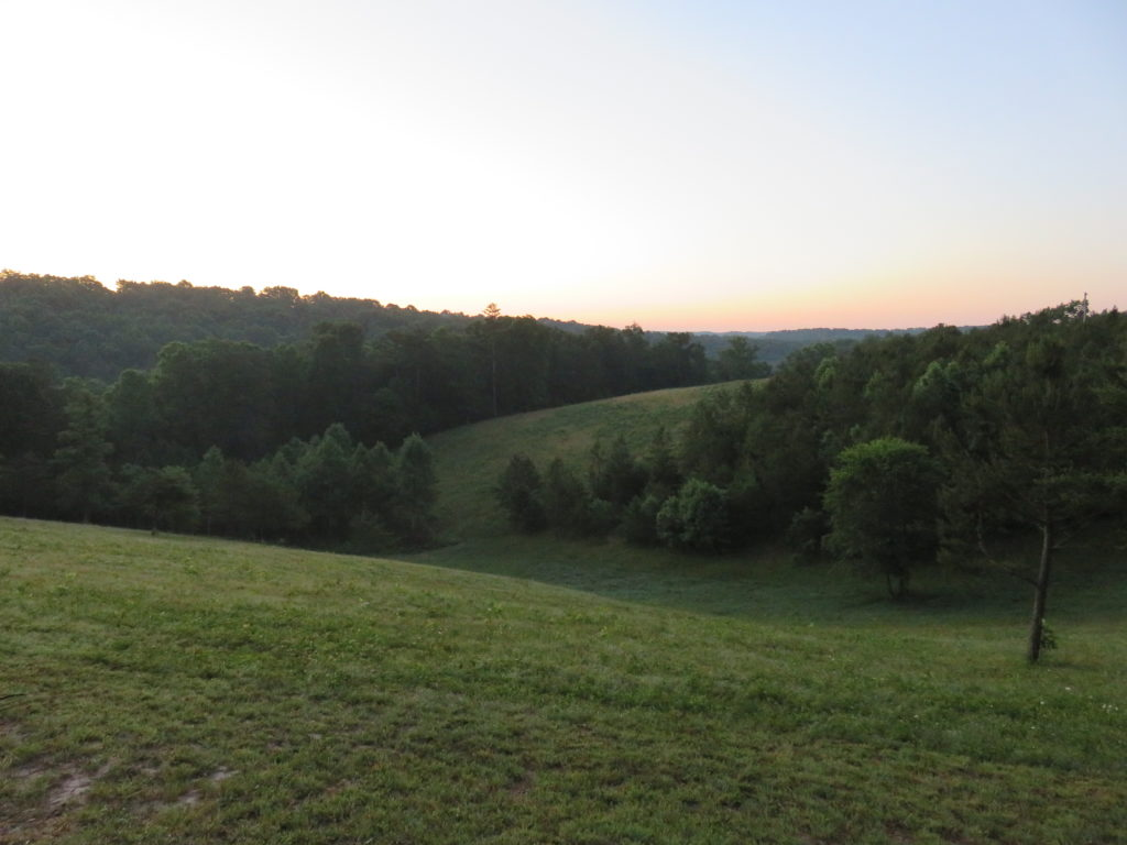 Hilltop View 2